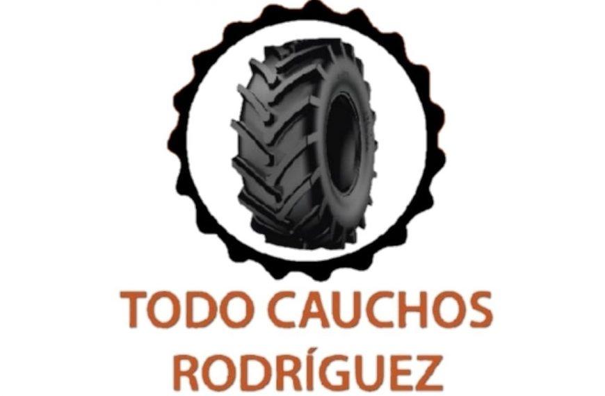 Todocauchos Rodríguez